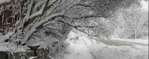 How to avoid the snow shovel blues!