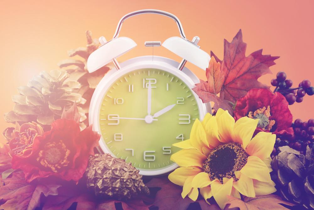 Alarm Clock in Fall Leaves