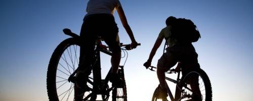 Banner Image for Out for a Ride? How Massage Can Help Cyclists Perform