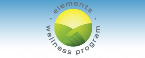 Banner Image for Elements Massage Wellness Program