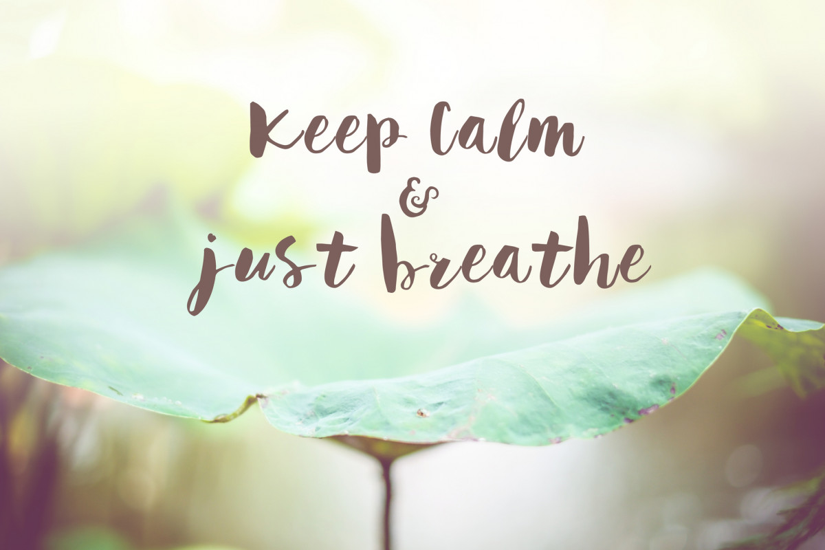 Banner Image for Take it Easy and Breathe