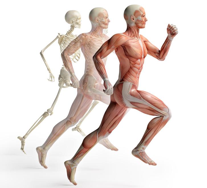 run-healthy-and-injury-free
