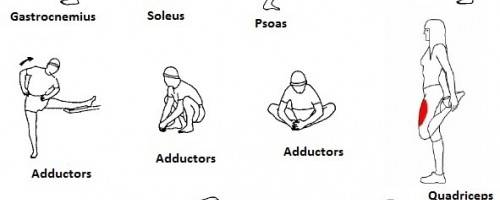 Banner Image for Improve Joint Flexibility with Sports Massage
