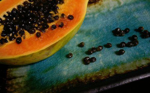 cut papaya on table Logo